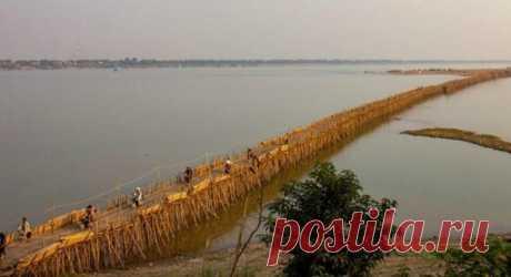 50 тысяч бамбуковых палок – и мост готов Между городом Кампонг-Чам и островом Ко-Пен в Камбодже проложен мост. По нему осуществляется переход пешком, на велосипедах, мотоциклах и автомобилях. Что удивительного, скажите вы: все мосты предназначены для передвижения людей и транспорта. Однако сооружение, о котором идет речь, – рукотворное, причем разбираемое и создаваемое заново каждый год.
