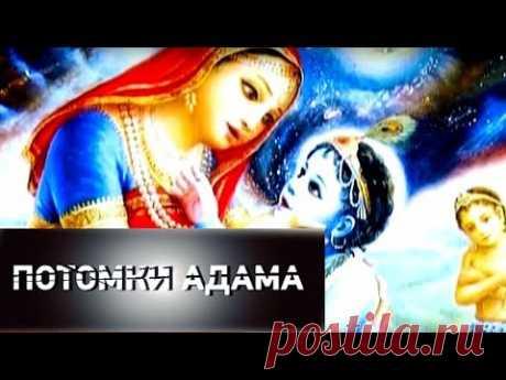 Потомки Адама   СЕНСАЦИЯ ИЛИ ПРОВОКАЦИЯ - YouTube