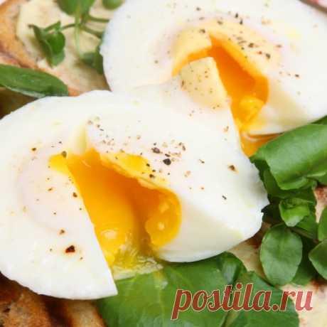 Тонкости приготовления яиц Ашота