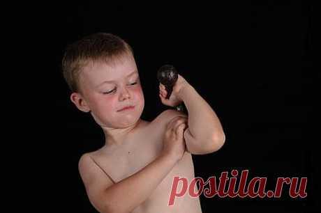 Упражнения с гантелями для детей. комплекс. упражнения. картинки.