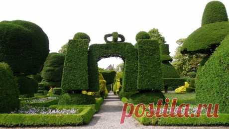 Левенс Холл На северо-западе Англии в середине графства Камбрии находится необыкновенный шедевр садового искусства. Здесь, в знаменитом саду усадьбы Левенс Холл, расположено все великолепие воплощения топиарного искусства. Уже три века на этой земле растут слоны, шахматные фигуры, львы , павлины и…