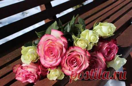 Как укоренить розу из букета Чтобы укоренить розу из букета в домашних условиях, важно помнить: хорошим результатом считается укоренение 30 % черенков в зимнее время и 70 % весной.