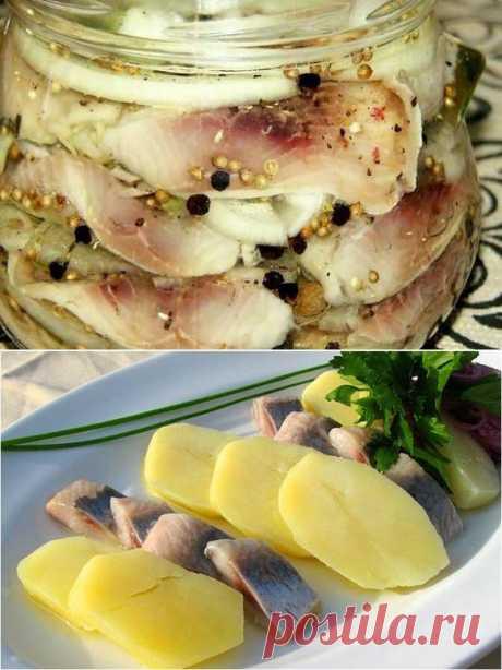 Вкусная маринованная селедка с луком