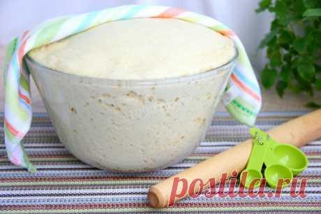 Пышное тесто для пирожков рецепт с фото пошагово - 1000.menu