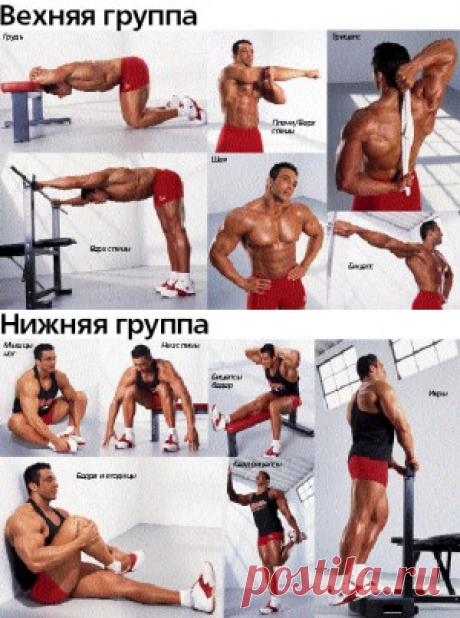 Растяжка мышц. Для чего нужна? | Sport My Way | Sport - My Way