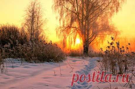 Рассвет вблизи Екатеринбурга. Автор фото: Евгений Тюрин.