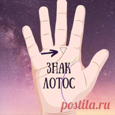 5 знаков на руках, указывающих на то, что вы - баловень судьбы - Сонники, гороскопы, гадания - медиаплатформа МирТесен Посмотрев на ладони рук, можно увидеть насколько удачлив в жизни должен быть человек. Особенно достоверно это можно увидеть с помощью 5 знаков на руках, которые указывают на то, что человек баловень судьбы. Рыбы Первый знак, который указывает, что его обладатель будет успешной личностью, это знак,