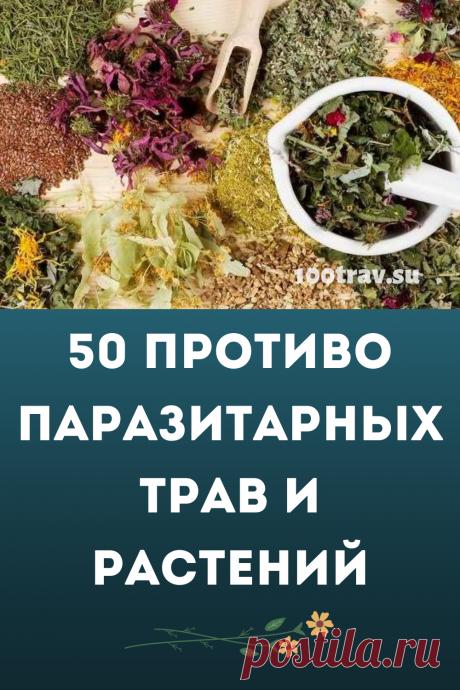 Питание человека оказывает большое влияние на здоровье. Так же оно влияет и на паразитов. Беспорядочное, смешанное и сладкое питание - идеальная среда для размножения паразитов - от вирусов до глистов. В рацион питания нужно вводить большое количество зелени, овощей, пряных трав, обладающих противопаразитарным действием.