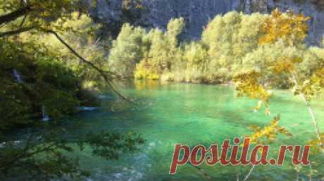 Damir Baru š i ć | Mir – Radost – zahvalnost – igra – odgovornost – priroda – pomaganje – podr š ka