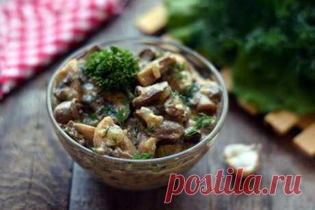 Рецепт с фото: Куриные сердечки с грибами, в сметане   Fan Female   Яндекс Дзен