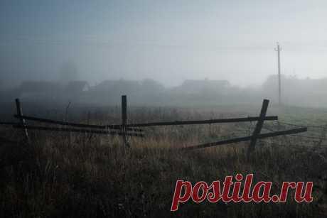 Туманный рассвет близ села Подвалье, Шигонский район, Самарская область. Автор кадра - Александр Старцев: Хорошего дня!