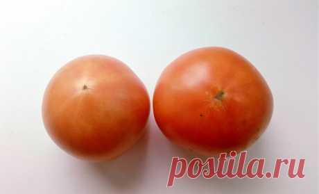 Семена у томатов отбираю только у плодов женского типа — они более качественные. Как их отличить от мужских   Маленький сад на краю Вселенной   Яндекс Дзен