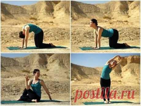 4 асаны для растяжки и оздоровления спины