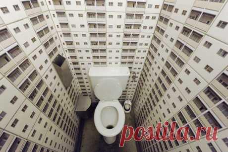 Оригинальная идея для оформления туалета!:)