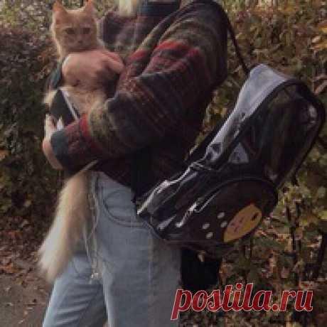 Вика Алексеева