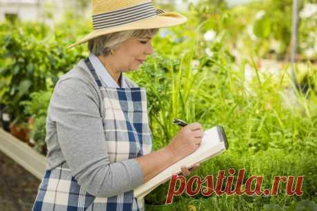 Все секреты севооборота | Почва и плодородие (Огород.ru)