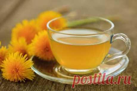 Как приготовить чай из одуванчиков: рецепт целебного чая