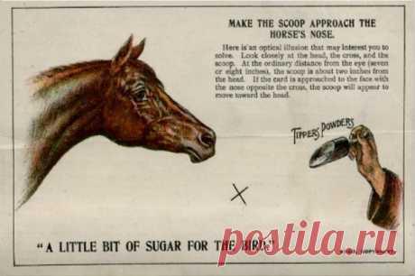 ⌘ ЗАРЯДКА ДЛЯ ГЛАЗ ⌘  Дай лошади лечебный порошок! (реклама лекарств для лошадей начала 20 века)  Показать полностью...