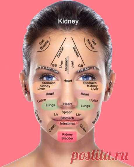 О чём могут рассказать наши морщины Морщины на лице появляются не только как признаки старения организма. Они транслируют состояние наших внутренних органов и психологическое — тоже. Вот что означают морщины в разных зонах лица человека.