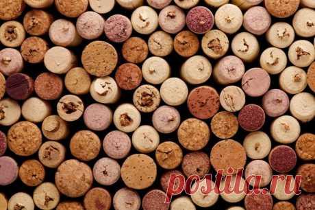 Как выбрать качественное вино и распознавать подделку? / Домоседы