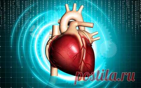 Оздоровление сердечной мышцы: Советы, которые предотвратят сердечные
