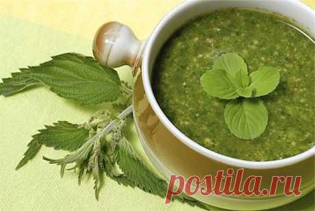 Супы в кухне многих народов играют большую роль. Супы содержат ароматические вкусовые вещества, возбуждающими аппетит. А если вы ранней весной сварите суп из крапивы, вы не прогадаете, наполните организм витаминами и ваша память запомнит этот интересный вкус. Крапиву всегда можно найти на дачном участке.
