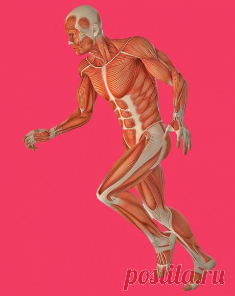 Упражнение доктора Попова для БЫСТРОГО снижения веса