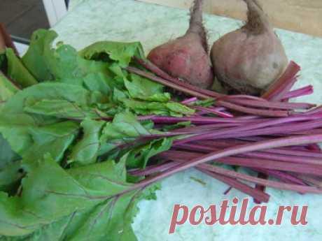 Свекольная ботва тушеная по-армянски (с вариациями!) : Вегетарианская и постная кухня