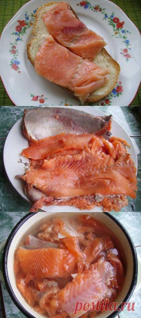 How tasty to salt a humpback salmon under a salmon   Lena Radova's Blog
