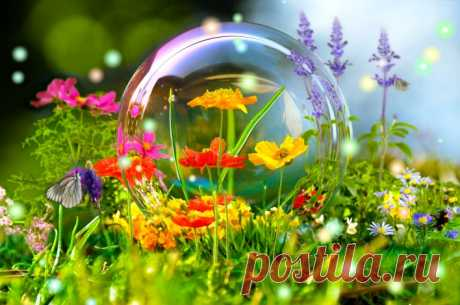 цветы краски пузырь Скачать картинку 4288x2848 цветы краски пузырь