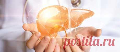 Что такое гепатопротекторы? - аптеки Вита