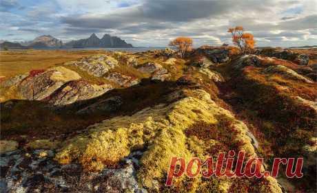 Норвегия Лофотены Photo by Yury Pustovoy