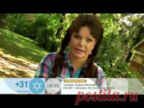 Доброе Утро - Доброе утро: Борьба с колорадским жуком народными средствами  23.07.14