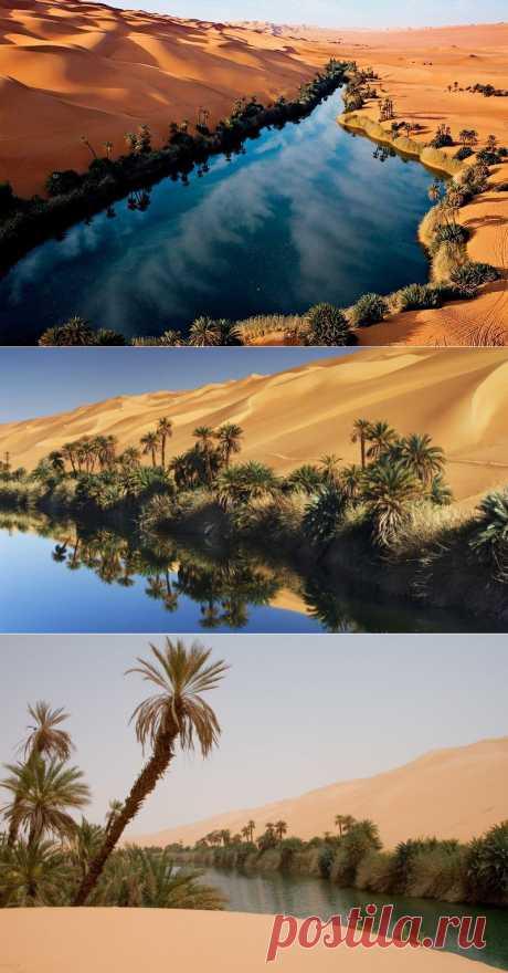 Сказочный оазис в африканской пустыне озера Убари : НОВОСТИ В ФОТОГРАФИЯХ