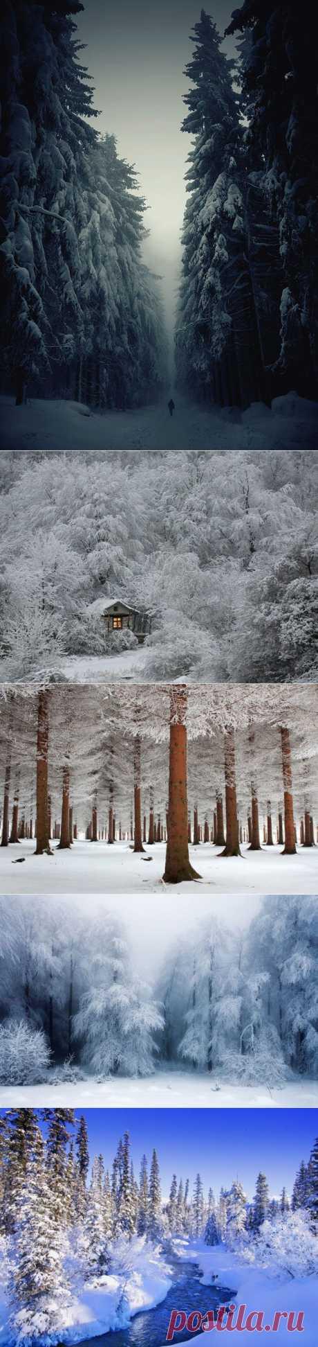 Отдохнем от жары, или снежные пейзажи / Туристический спутник