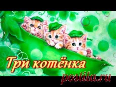 Три котенка Сказка Сутеева В.Г. для малышей - YouTube