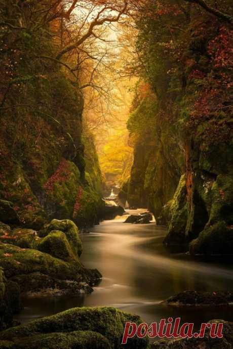 "peeblespair: "" orchidaaorchid: Fairy Glen Gorge, River Conwy by Craig McCormick """