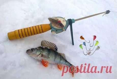Хитрая тактика ловли на безмотылку: полезные советы тому, кто хочет наловить рыбу зимой | Страсти по рыбалке | Яндекс Дзен