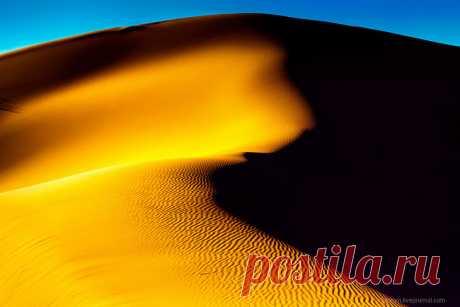 Пески времени или фотопрогулка по пустыне Сахара