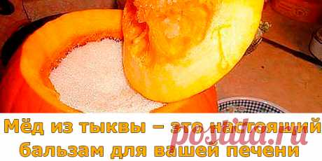 Мёд из тыквы – это настоящий бальзам для вашей печени | Полезные советы