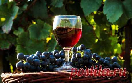 Винные Заметки: 7 секретов вкусного домашнего вина + рецепт из белого винограда