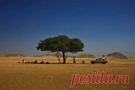 Фотограф Брент Стиртон (Brent Stirton): кочевники Сахары Tuareg Nation - Интернет журнал Allwelikes