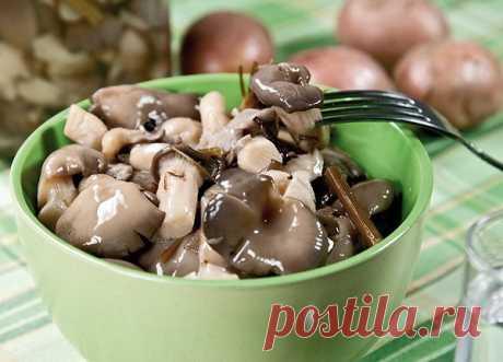 3 рецепта маринованных вешенок Предлагаем 3 рецепта маринования вешенок. Очень вкусные грибочки получаются.