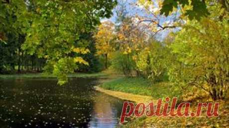 Осень обои, осень картинки, осень фото