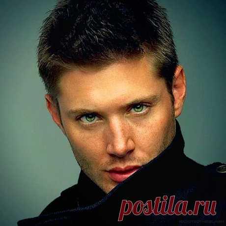Как выглядит мужчина вашей жизни: шатен, брюнет или блондин? - onedio.ru