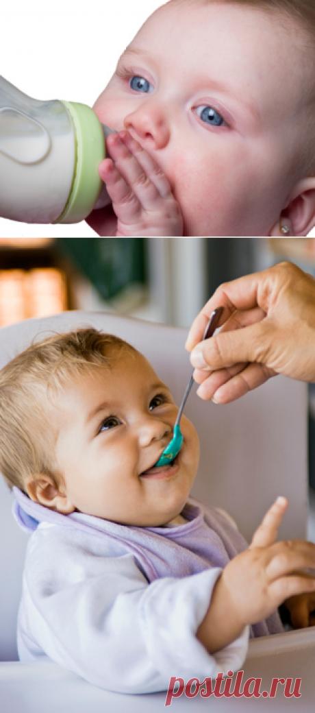 В щадящем режиме. Питание детей после пищевых отравлений. Проблемы с ЖКТ у детей