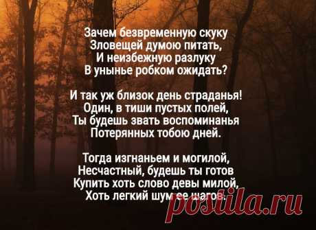 Антидепрессант: короткое стихотворение Пушкина, для тех, кто утратил вкус к жизни | Эстер Нуво | Яндекс Дзен