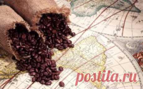 Как выбрать кофе в зернах с учетом купажа и степени обжарки?