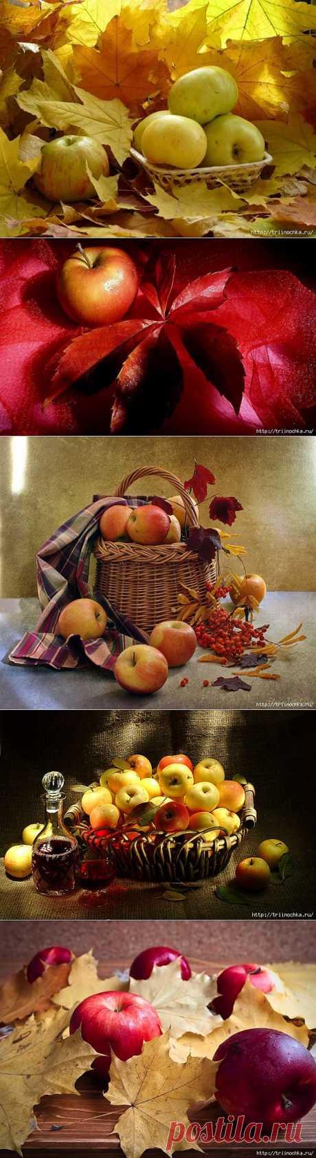 Натюрморты с осенними яблоками.