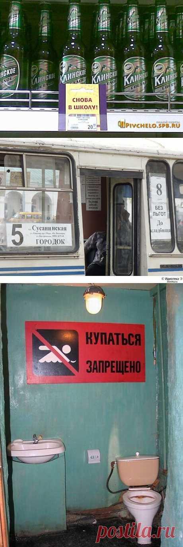 Прикольные картинки с надписями — jancel.ru